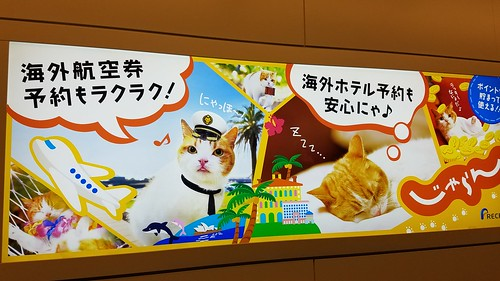 Ad with cats in Tokyo Haneda Airport