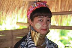 Kayan lady - Thailand