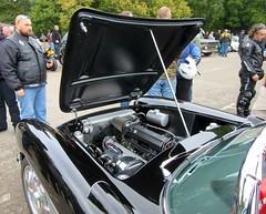 Under the Hood :  V8 4.6L  - fuel injected engine *