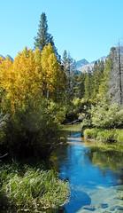 Crystal Clear Bishop Creek, Sierra Nevada, CA 10-17