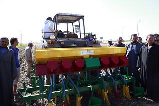 Sat, 10/28/2017 - 12:55 - Raised-bed planting