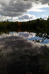 Etang un jour d'automne - Photo of Gressey