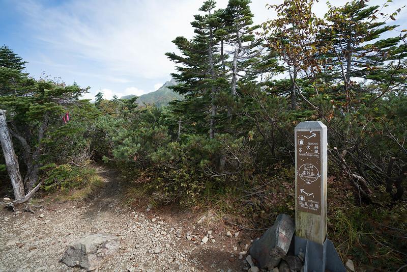 20170924-塩見岳_0147.jpg