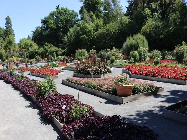 jardin des plantes obiective turistice lyon 3