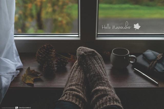 Hello November... 🍁