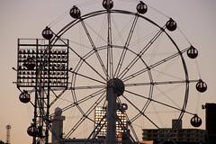 City_Wheel