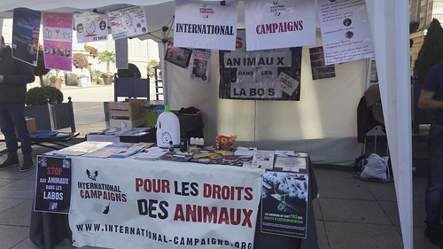 internationalcampaigns a posté une photo :	dav