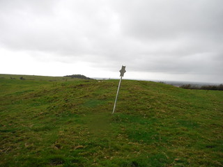 Tumulus on Tolsford Hill