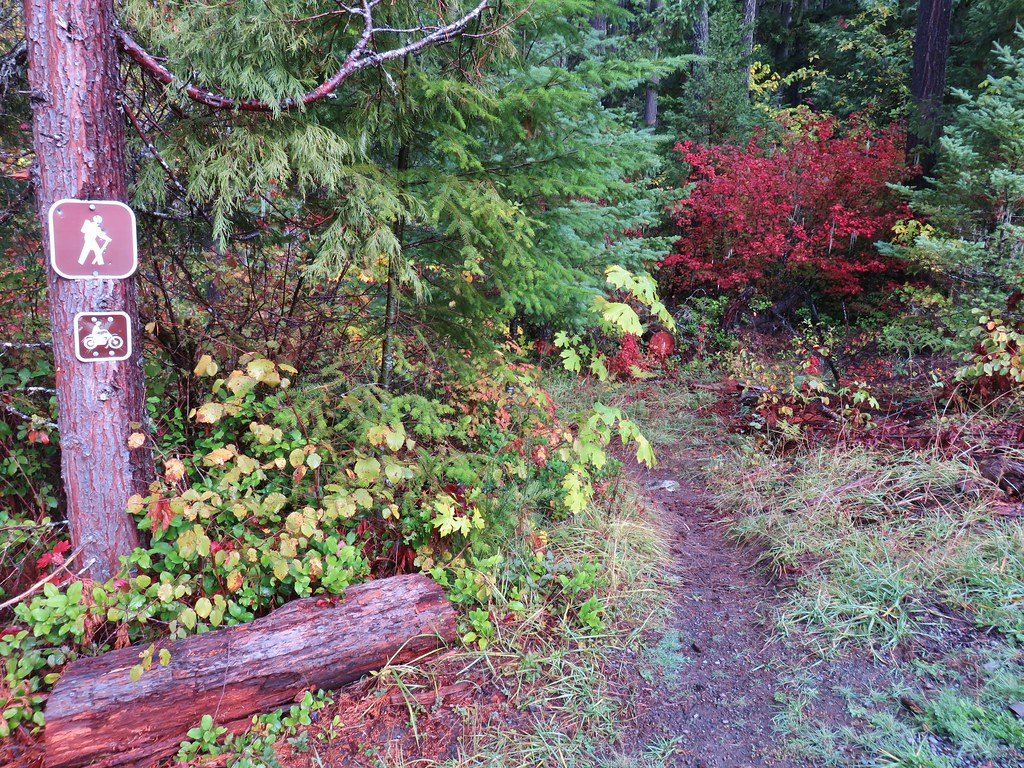 Dead Mountain Trail at Flat Creek Road