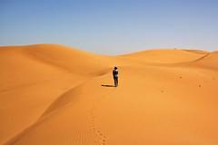 Ordos desert