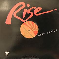 HERB ALPERT:RISE(JACKET B)