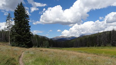 Segment 6, Colorado Trail, near Breckenridge, CO18