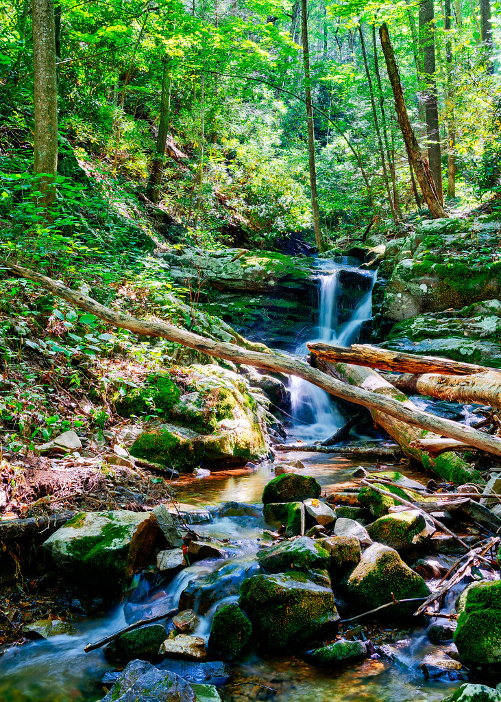 Squibb Creek Cascade