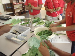 cooking our collard greens