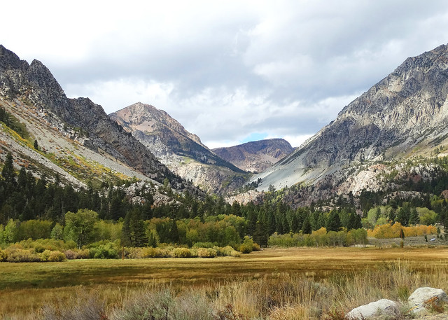 Autumn Meadow, Sierra Nevada Range, CA 9-17