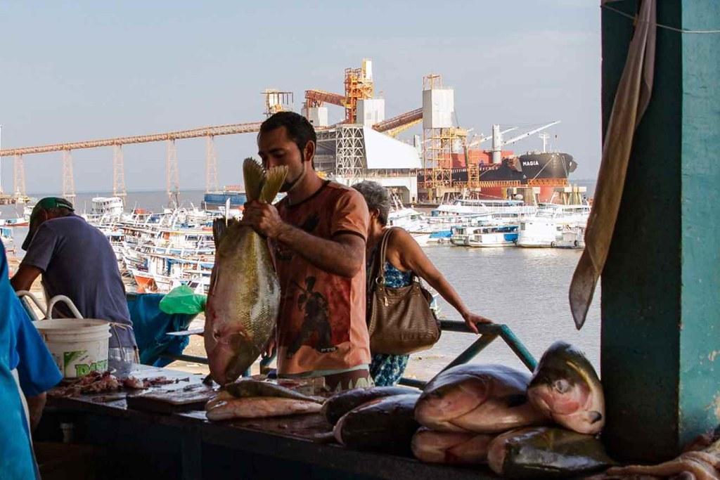 mercado-peixes-santarem