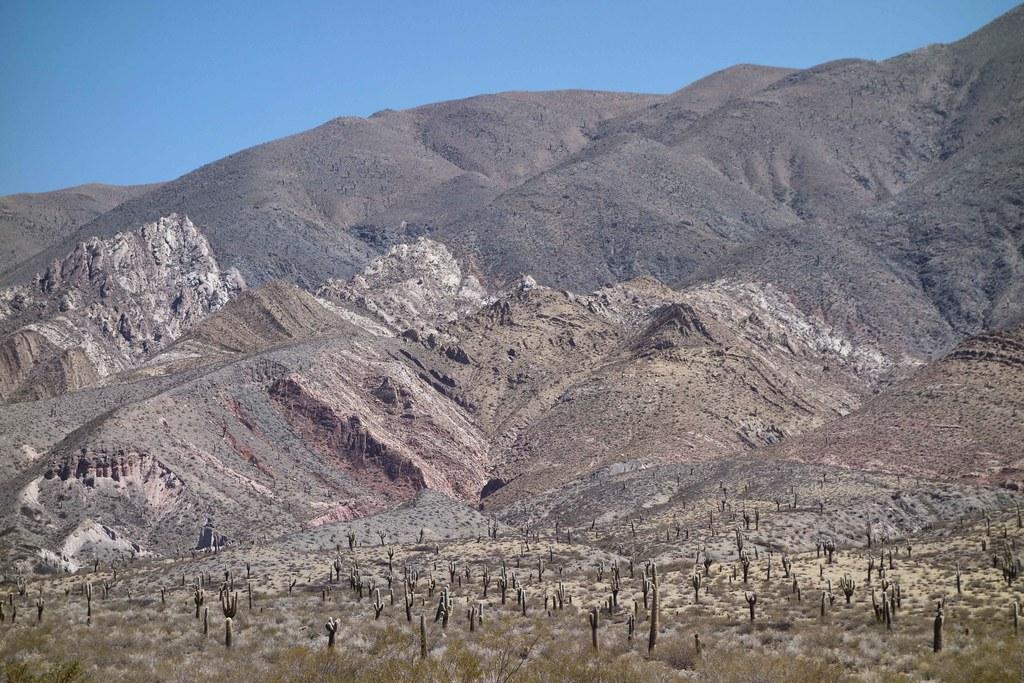 Salta Sud - Montagnes et Cactus