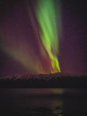 Aurora Borealis-210021