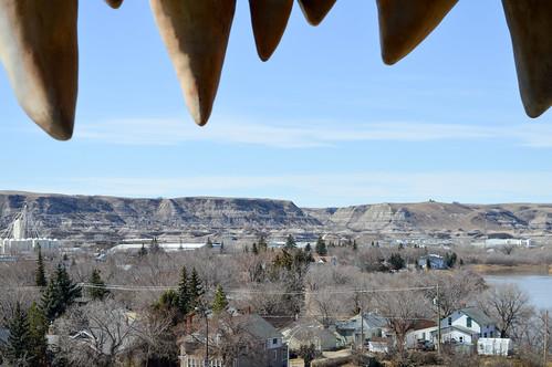 Dinosaur view