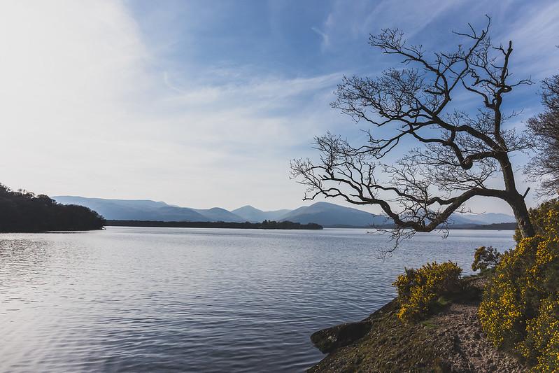 Balmaha - Loch Lomond - Ecosse