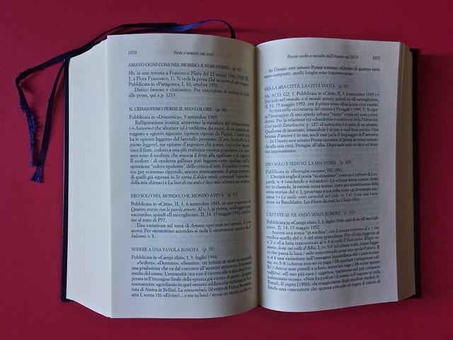 Sandro Penna, Poesie, prose e diari. Mondadori, i Meridiani; Milano 2017. Resp. gr. non indicata. Note al testo, in coda al volume; a pag. 1070 e 1071 [part.].
