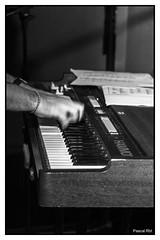 orgue hammond