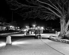 Monterey Wharf at Night