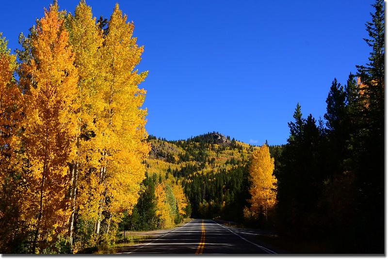 Fall colors, Mount Evans Scenic Byway, Colorado (25)