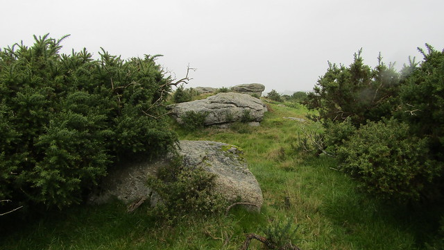 Bee Tor higher outcrops