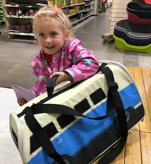 Annabelle with pet carrier