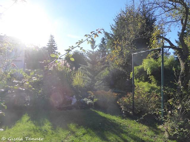 Mein Herbstgarten 2017