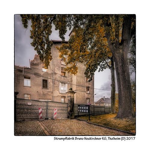 Strumpffabrik-Bruno-Neukirchner-KG,-Thalheim-(D)-2017
