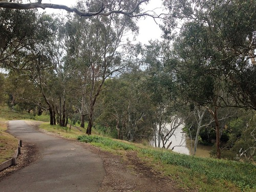 Main Yarra Trail, Lower Plenty