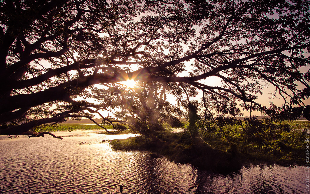 24.06-Tissamaharama-Sri-Lanka-canon-1500px-028