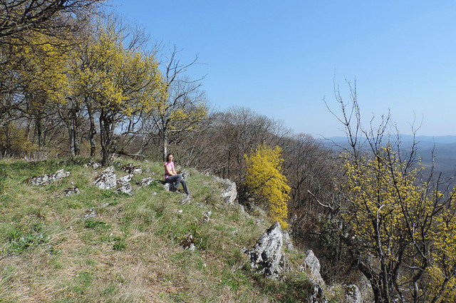 Bükk Plateau, Bükk National Park, Hungary
