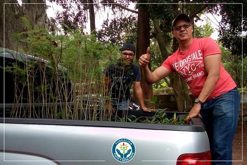 Apoyamos en Reforestar Colonias en la Tegucigalpa