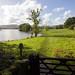 Lake Windermere, Cumbria  4
