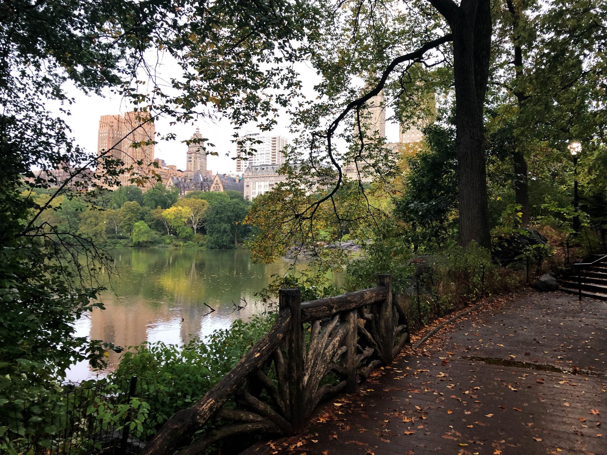 NEWYORK-8404