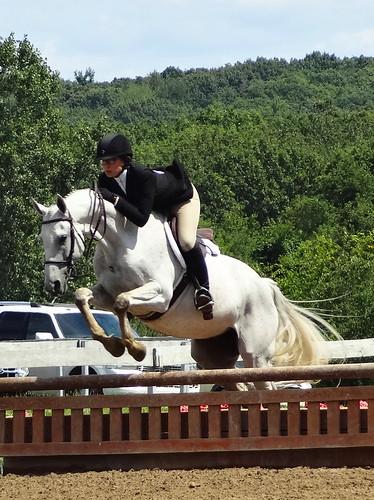 pony 096 (1)
