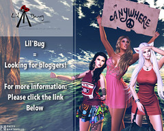 lil'bug is looking for bloggers
