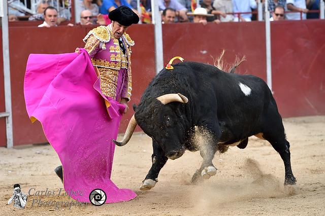 Corrida de toros 44