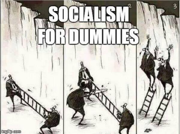 socialdum1