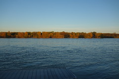 Herbst_41