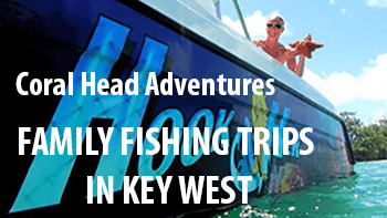 Learn About Fishing With Your Family In Florida Key West