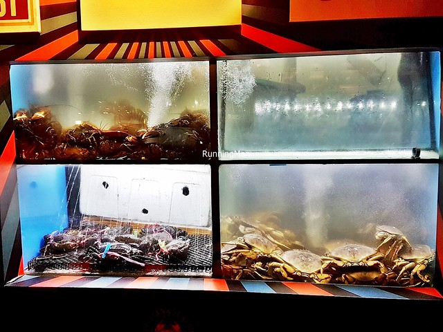 Live Seafood Tanks