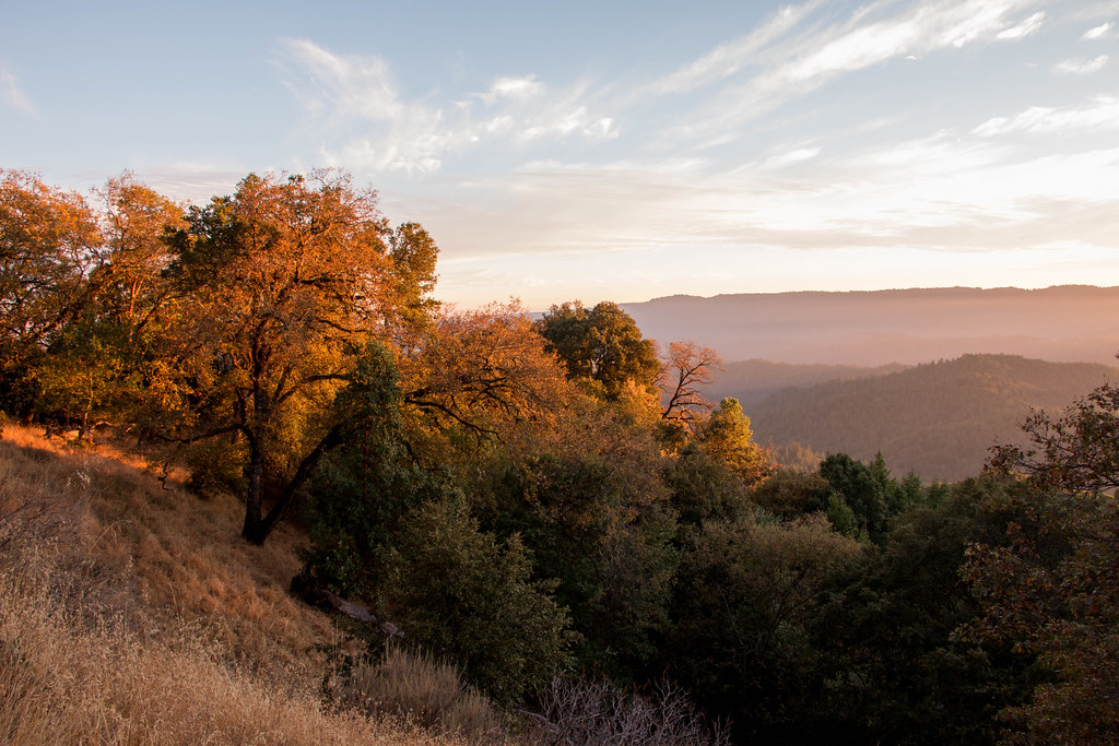 10.29. Castle Rock State Park