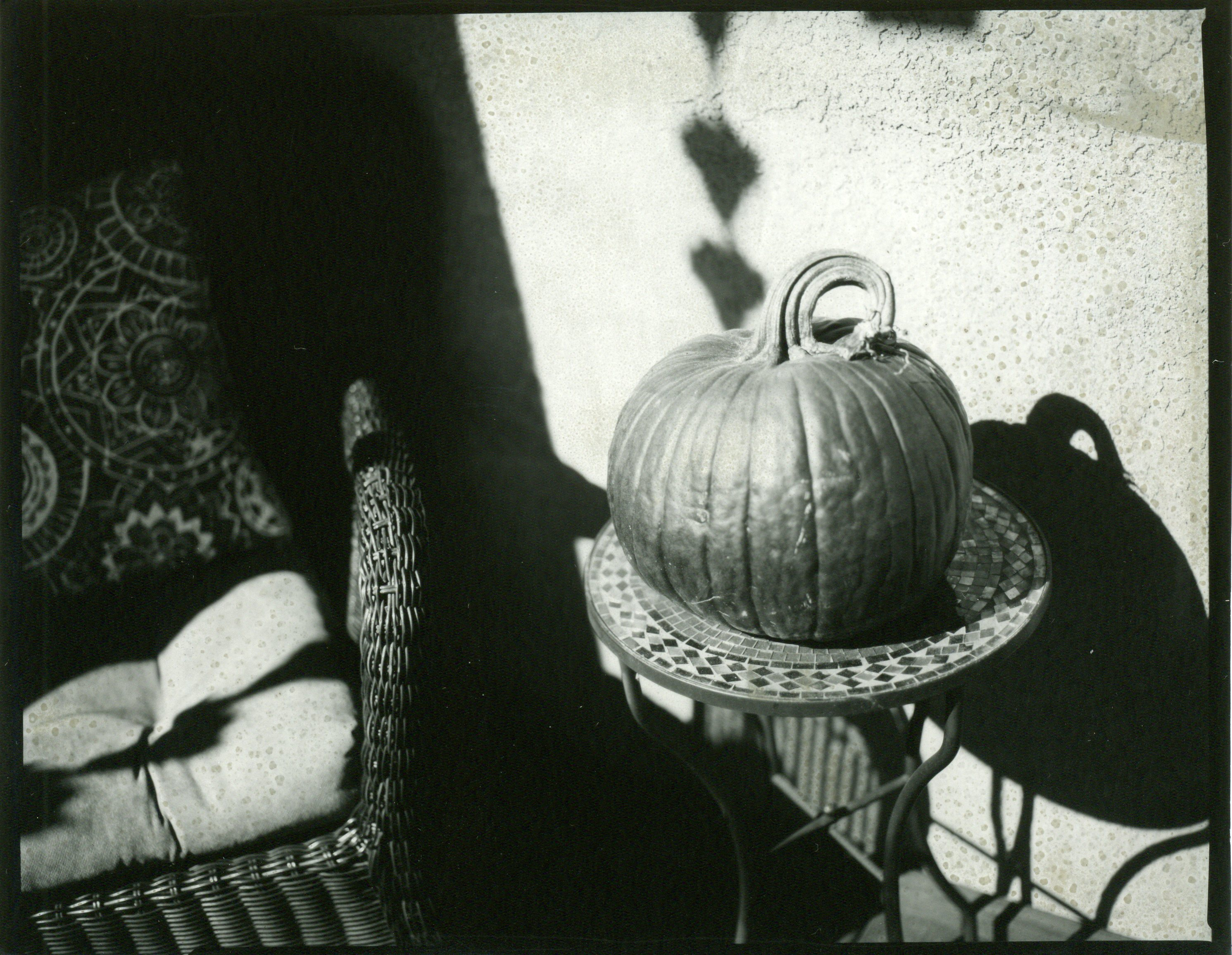 Pumpkin002