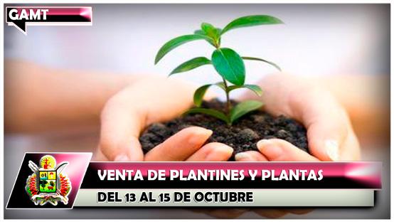 venta-de-plantines-y-plantas-del-13-al-15-de-octubre