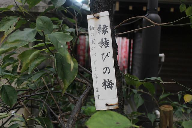 hirakawatenmangu_0040