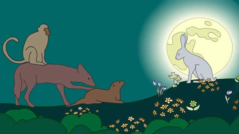 Ilustrasi kisah kelinci yang bijak.